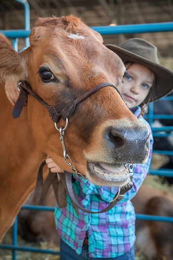 Eight year old Violet Asher tends to her cow, Daisey, at the Alaska State Fair, Palmer, Alaska (Clark James Mishler)