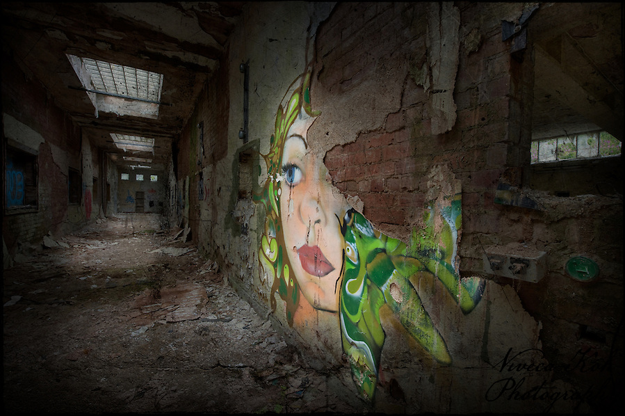 Painting by artist Fauna Graphic in abandoned building in Sheffield, South Yorkshire (Viveca Koh)