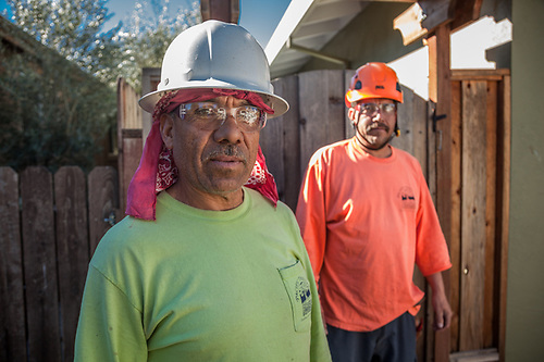 Carlos and Ruben with Pacific Tree Care on the job in Calistoga (Clark James Mishler)