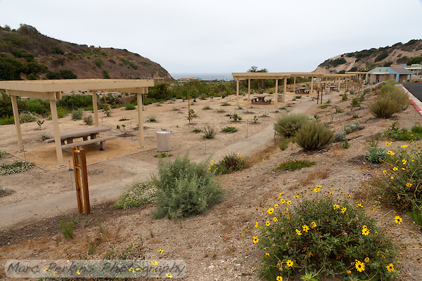 Crystal Cove State Park opened a new day use area in the summer of 2011.  This photograph shows the row of picnic tables that is adjacent to the parking lot.  There is a path that leads to the ocean, and also a path connecting the day use area to the trails leading into Crystal Cove State Park's inland wilderness. (Marc C. Perkins)