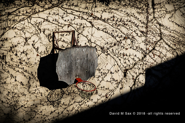 11.17.18 - The Art of Basketball.... (© David M Sax 2018 - all rights reserved)