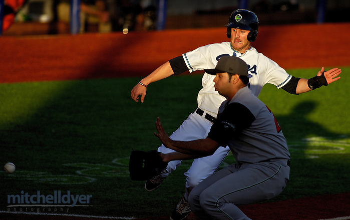HILLSBORO, OR - JUNE 20: The Hillsboro Hops vs the Salem Keizer Volcanoes at Ron Tonkin Field in Hillsboro, OR. (Craig Mitchelldyer/Hillsboro Hops) (Craig Mitchelldyer/Hillsboro Hops)