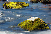Little Stony Creek flows around green mossy boulders, Pembroke, Giles County, Virginia, USA