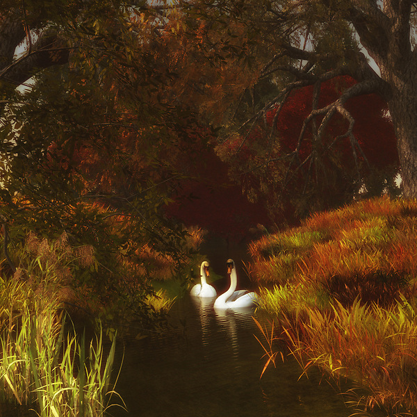 For those who love nature scenes, this image depicting two swans in a forest is certainly going to take your breath away. These two swans have been together for a long time. We can imagine this easily. We can imagine the journey that has brought them to this moment in time. Through all of it, they have remained together. They are here to appreciate the extraordinary beauty of their surroundings together. This is an image that has the ability to captivate almost anyone. The details are going to capture your attention. Available as canvas wall art or as framed wall art. (Jan Keteleer)
