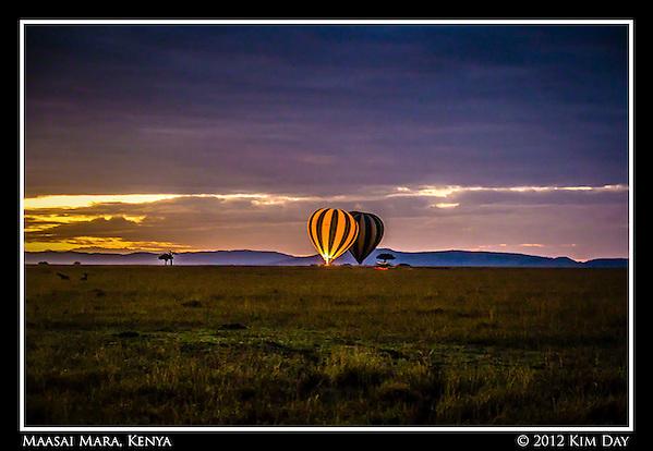 Balloons Ready For Take Off At Dawn.Maasai Mara, Kenya.September 2012 (Kim Day)