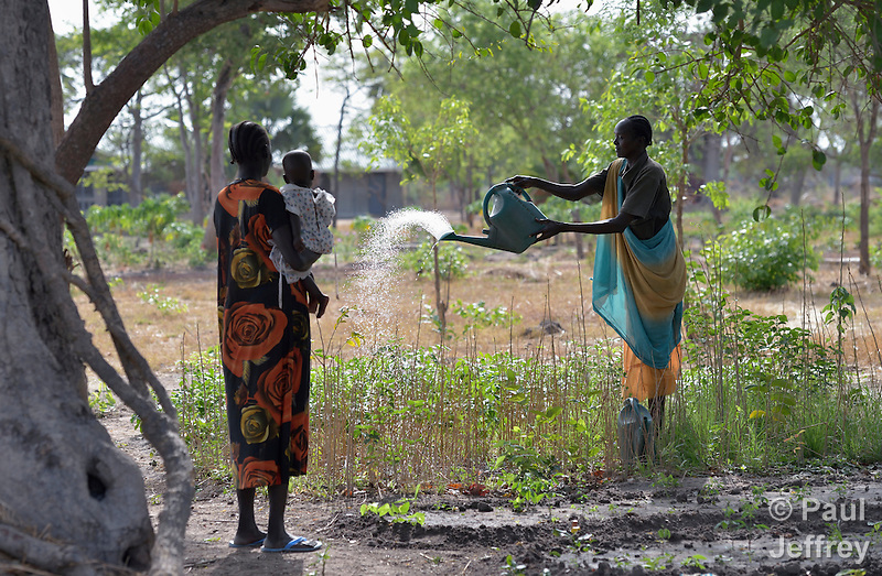 A woman waters the crops at the Multi Agricultural Jesuit Institute of Sudan (MAJIS), an agricultural school located outside Rumbek, South Sudan. (Paul Jeffrey)