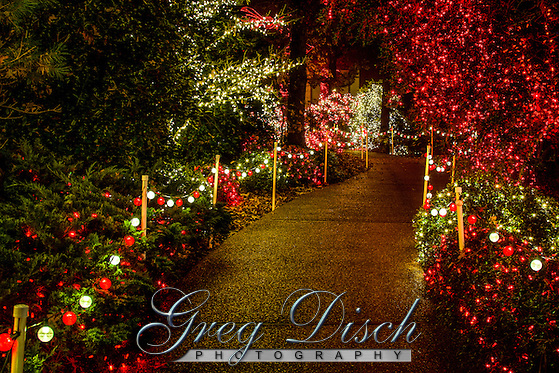 Holiday Light Display at Garvan Wood Gardens in Hot Springs Arkansas and features More than 4 million lights decorating the 17 acres of woodland gardens. (Greg Disch gdisch@gregdisch.com)