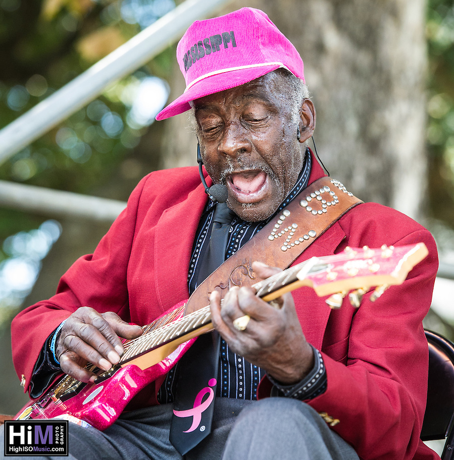 "Leo ""Bud"" Welch performs at the 2014 Crescent City Blues and BBQ Festival in New Orleans, LA. (Elsa Hahne)"