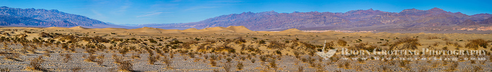 United States, California, Death Valley. Panorama of the Mesquite Flat Sand Dunes are at the northern end of the valley floor. (Photo Bjorn Grotting)