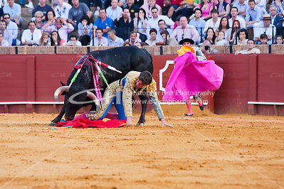 bull fighting scene in sevilla, spain (Christopher Holt LTD London UK/Image by Christopher Holt - www.christopherholt.com)