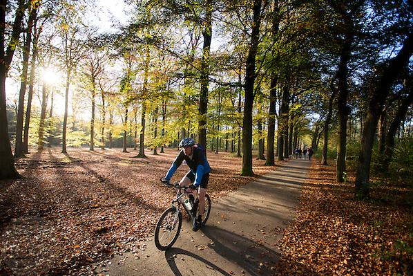 Bij Woudenberg geniet een mountainbiker van het mooie herfstweer. Near Woudenberg a cyclist enjoys the nice autumn weather. (Bas de Meijer)