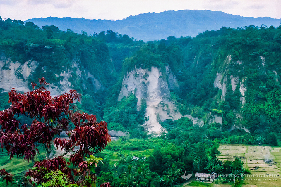 West Sumatra, Bukittinggi. Sianok canyon (Ngarai Sianok) is a steep valley (ravine) located in Bukittinggi, about 15 km long. (Photo Bjorn Grotting)