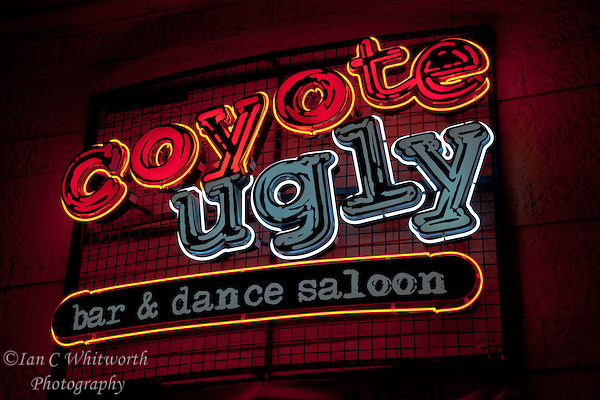 Looking up at the Coyote Ugly neon sign at New York New York in Las Vegas (Ian C Whitworth)