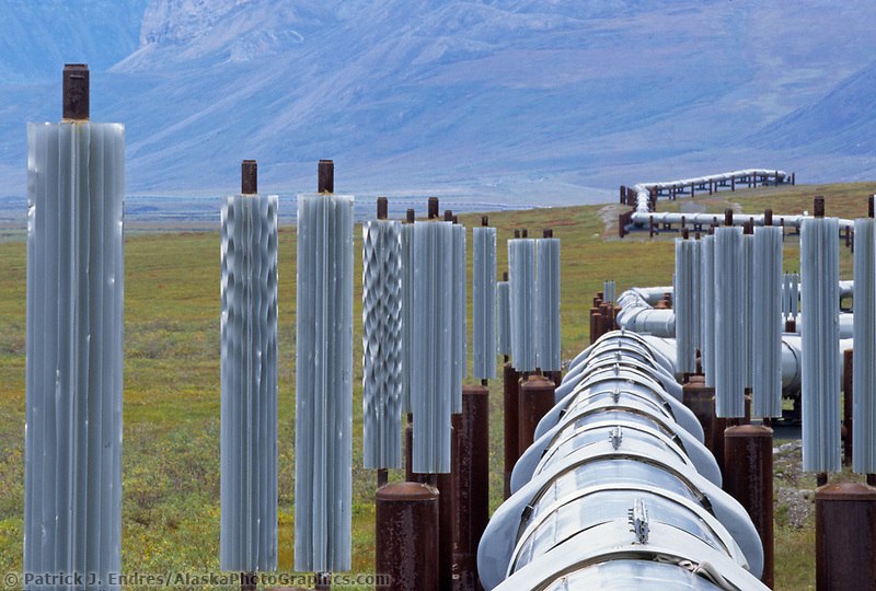 Trans Alaska Oil Pipeline in Atigun canyon, Brooks range, Alaska (Patrick J. Endres / AlaskaPhotoGraphics.com)