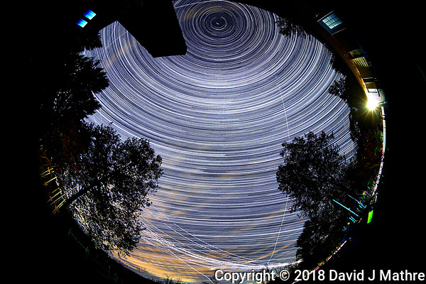 Star Trails looking Up (19:28-02:29). Composite of images taken with a Nikon D850 camera and 8-15 mm fisheye lens (ISO 800, 10 mm, f/5.6, 30 sec) (David J Mathre)