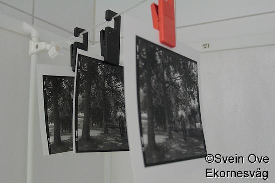 Tre bilder henger til tørk etter en av de første øktene i mørkerommet. Foto: Svein Ove Ekornesvåg (Svein Ove Ekornesvaag/Svein Ove Ekornesvåg)