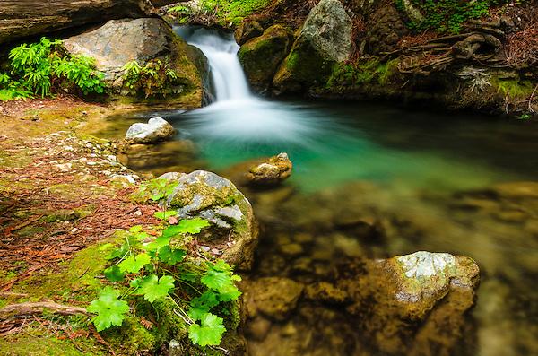 Cascade on Hare Creek, Limekiln State Park, Big Sur, California USA (© Russ Bishop/www.russbishop.com)