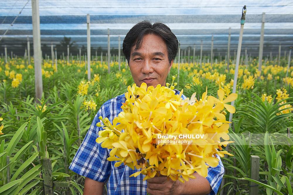 SAMUT SONGKRAM, THAILAND - MAY 22, 2009: Unidentified man demonstrates flowers at the orchid farm in Samut Songkram, Thailand. (Dmitry Chulov)