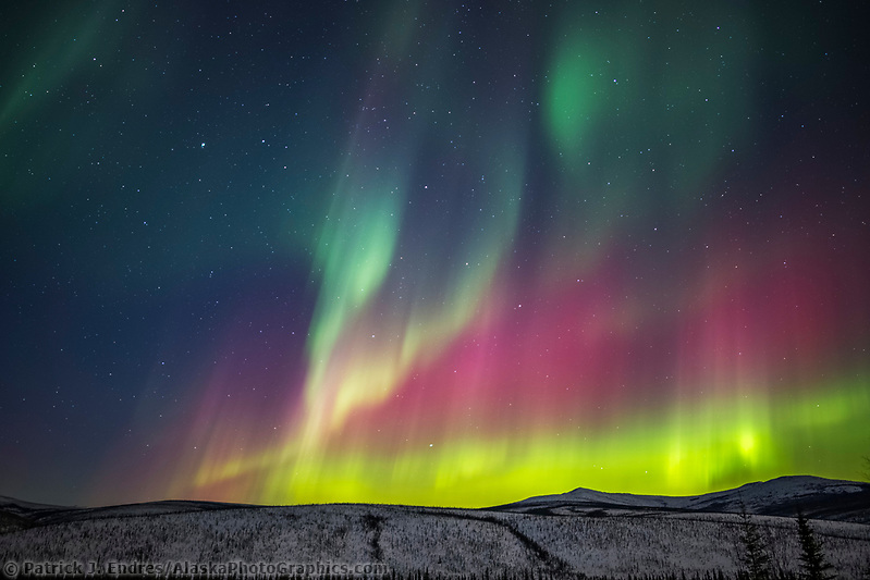 The colorful aurora arcs over the White Mountains National Recreation Area, interior, Alaska. (Patrick J Endres / AlaskaPhotoGraphics.com)
