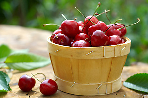fresh picked cherries (by food photographer Paul Williams. http://www.funkyfood.co.uk)