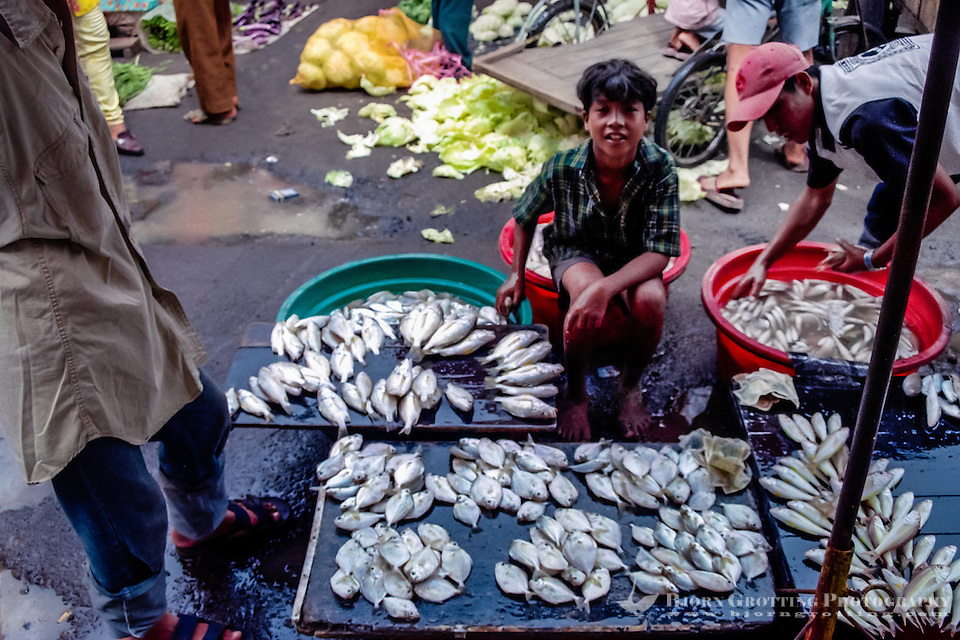 West Sumatra, Padang. Small fish for sale. Padang market, Pasar Raya. (Photo Bjorn Grotting)