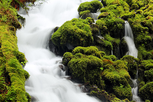 Wahkeena Creek, Columbia River Gorge National Scenic Area, Oregon, USA (Brad Mitchell)