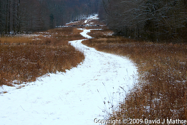 Winter Winding Road. Sourland Mountain Preserve. Nikon D300 18-200 mm f/3.5-5.6 VR lens (ISO 200, 50 mm, f/8, 1/250 sec) (David J Mathre)