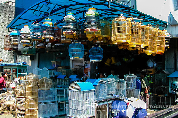 Indonesia, Java, Bogor. Birds for sale on a market in the city center. (Photo Bjorn Grotting)