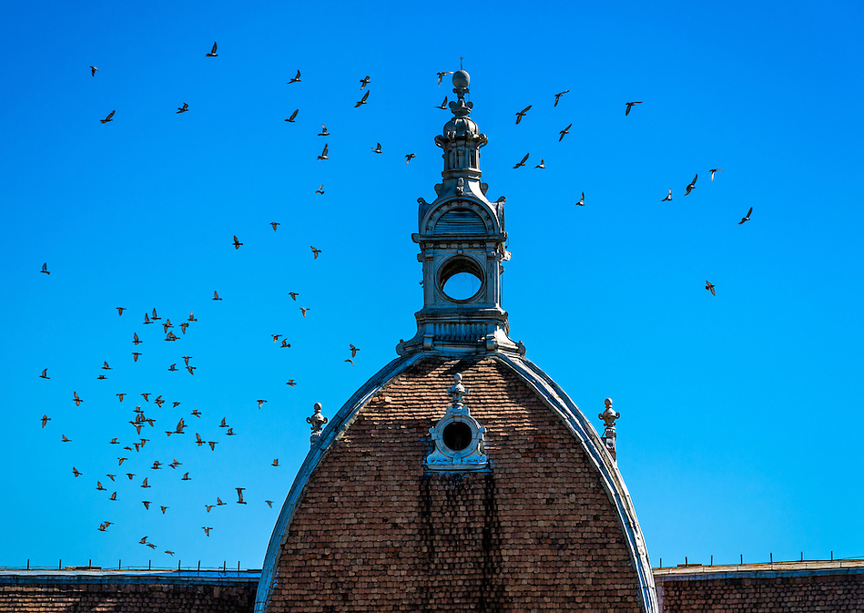 View of Dome at the Council of Brasov County in Romania (Daniel Korzeniewski)