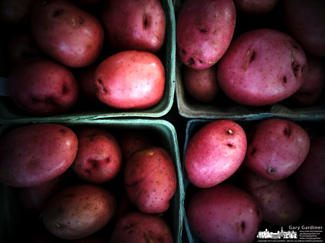 Potatoes for sale at the Uptown Westerville farmers market. (Gary Gardiner/SmallTown Stock)