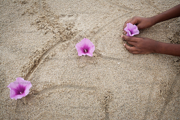 Vijitha places flowers in the sand on the beach close to the location of her mother's death in the tsunami.  These photographs encompass four years in the lives of two families of children from South India who lost their mothers to the Asian tsunami. Following that momentous event in 2004, the five Krishnamurthy sisters from Puddupettai went to live in the Cuddalore Government Special Home for Tsunami Children. And Vijitha and Vijyashree Viswanathan, after an initial brief spell at the same home, now live with their father and his new wife in the nearby fishing village of Thalanguda.  Each child affected by the tsunami had to adapt to changed circumstances and cope with emotions no one in their family could have possibly anticipated. The younger children seemed to adjust more quickly than their older siblings. And, while grief rendered some silent, in others it provoked a real sense of anger. Some became withdrawn while others craved attention and resorted to disruptive behavior. For all of the children, the experience of losing a parent seemed to strengthen the bond they shared with their brothers and sisters.  The loss of a parent meant that some of the children photographed in this project inherited responsibilities that, while often a burden, provided a distraction from their own painful emotions. Sivaranjini Krishnamurthy lost her mother to the tsunami and then, together with her four younger sisters was abandoned by her father. At eleven years of age she took on the role of a mother to her younger sisters. Though she attends school and receives the support of orphanage staff, Sivaranjini has sacrificed much of her own childhood to take care of them.  For Sivaranjini and the other children whose experiences are presented here, the tsunami is a defining event in their lives; the terrible personal upheaval they have suffered will inevitably shape all of their futures.  Photo: Tom Pietrasik Tamil Nadu, India December 2008 THIS PHOTOGRAPH IS THE COPYRIGHT OF (Tom Pietrasik)