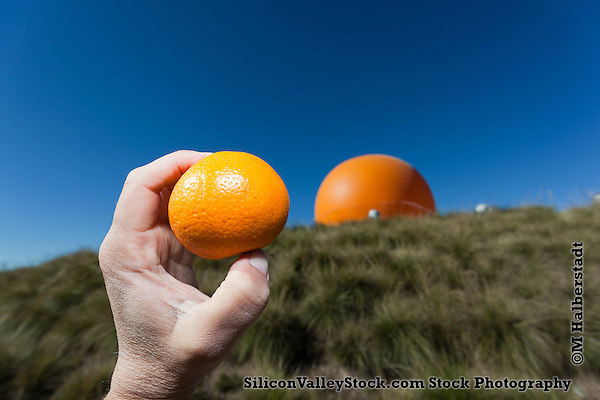 Oranges and the Orange Baloon, Great Park, Irvine, Orange County, CA (Michael Halberstadt)