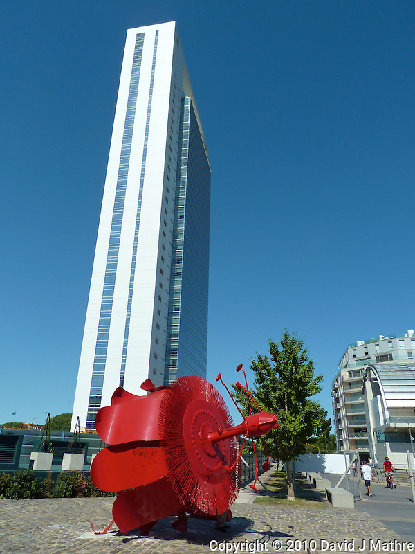 Red Flower Sculpture in Buenos Aries. Images taken with a Leica V-Lux 20 camera (ISO 80, 4.1 mm, f/5.6, 1/500 sec) (David J Mathre)