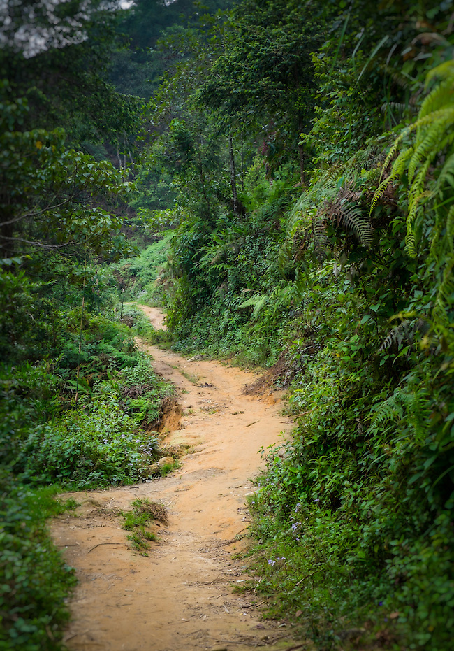 SAPA, VIETNAM - CIRCA SEPTEMBER 2014:  Hiking trail on the mountains in Sapa, North Vietnam. (Daniel Korzeniewski)