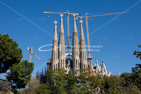 Sagrada Familia Barcelona Photography shoot in 2008 by Christopher Holt (Christopher Holt LTD - LondonUK/Christopher Holt LTD)