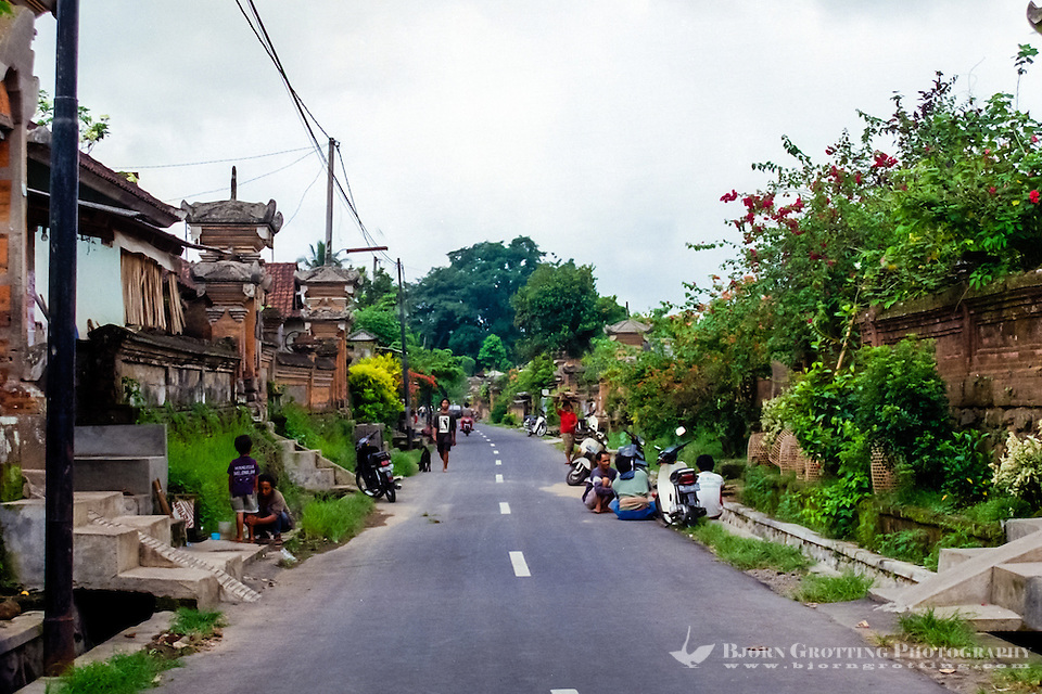 Bali, Gianyar, Ubud. A traditional village in the northern part of Ubud. Every home is surrounded by high walls, inside there can be many smaller buildings, including a family temple. (Photo Bjorn Grotting)