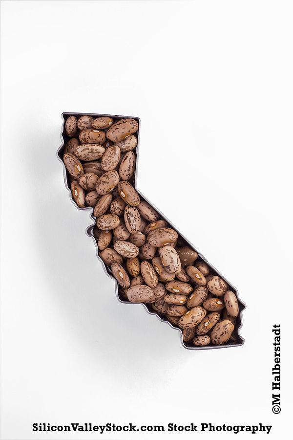 Outline of the State of California (Michael Halberstadt)