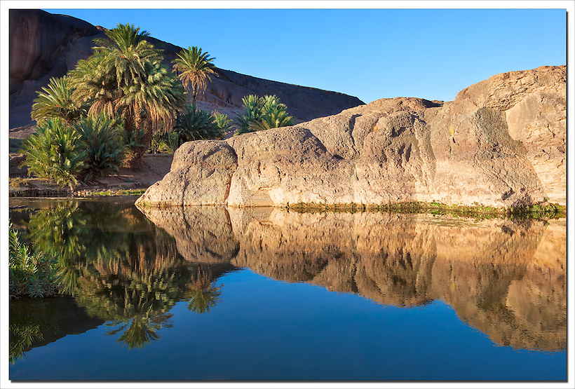 Mountain and date palms with reflections in river, Fint Oasis, Morocco. (Rosa Frei)