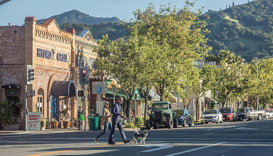 Calistoga residents Susan and Tom Fickinger with their dog, Brodie, cross Lincoln Avenue on a Saturday morning  in Calistoga. (Clark James Mishler)