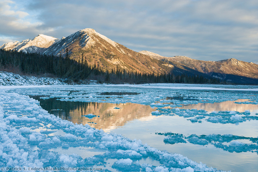 Pancake ice forming along the Koyukuk River at freeze up in october, Brooks Range, Alaska (Patrick J. Endres / AlaskaPhotoGraphics.com)