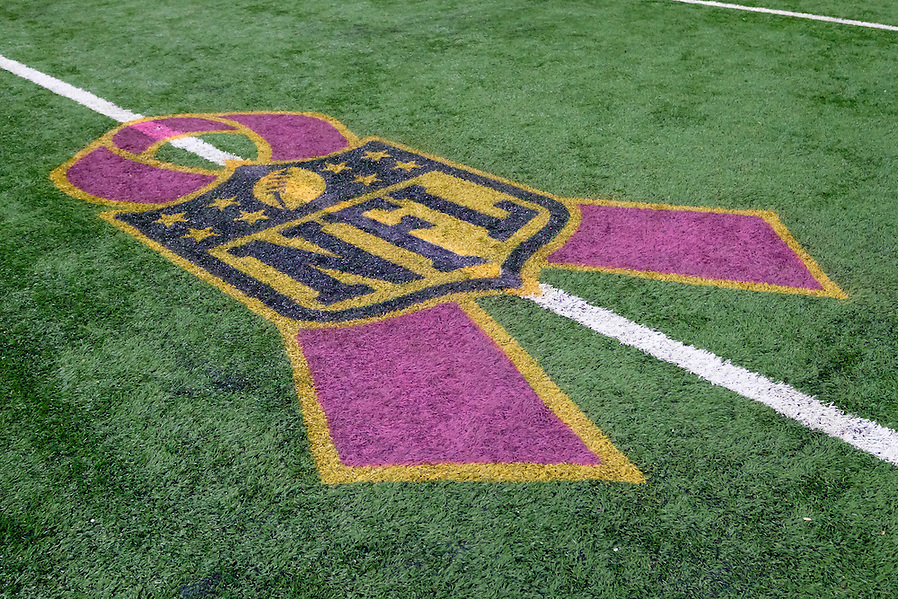 General view of Breast Cancer Awareness logo on the field prior to between the Detroit Lions and the Arizona Cardinals an NFL football game at Ford Field in Detroit, Sunday, Oct. 11, 2015. (AP Photo/Rick Osentoski) (Rick Osentoski/AP)