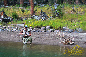 Fly-fisherman showing of catch at Slough Creek in Yellowstone National Park. Some time previous wolves had killed and eaten the seven point Bull elk. (© Daryl L. Hunter - The Hole Picture/Daryl L. Hunter)