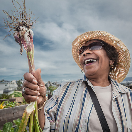 Bobby Draper pulls the first garlic from her garden at the Potrero Community Garden Project in San Francisco. (© Clark James Mishler)