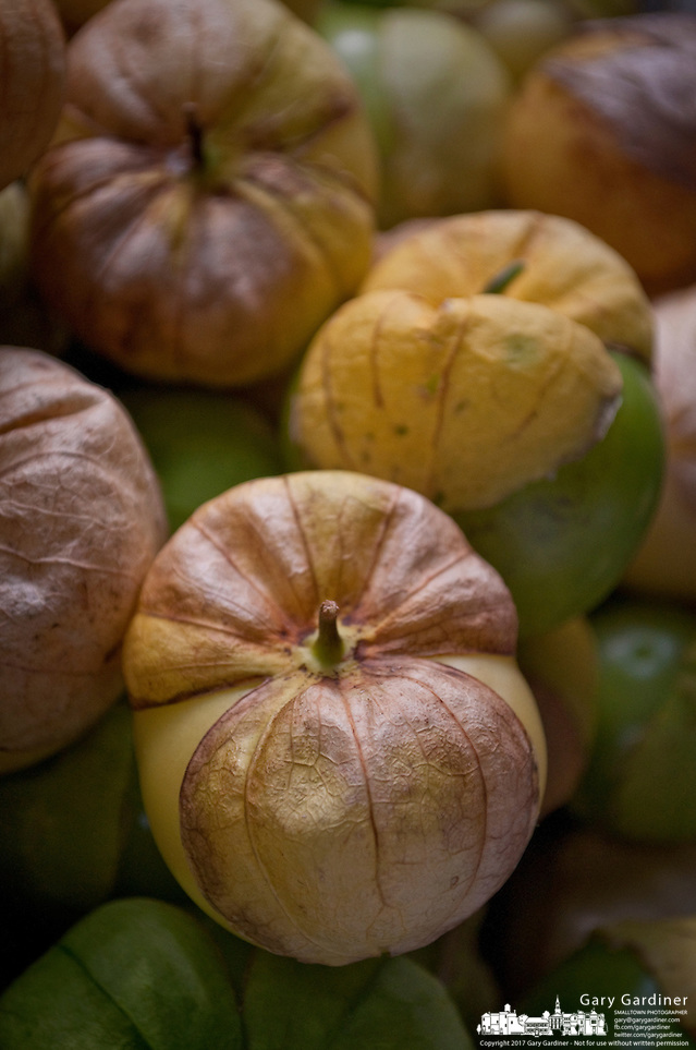 Tomatillo for sale at a farmers market. (Gary Gardiner/SmallTown Stock)