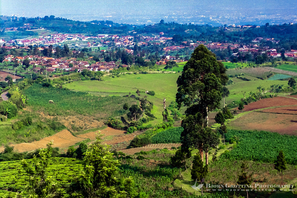 Indonesia, Java, Cisarua. Landscape in the hills above Bandung. (Photo Bjorn Grotting)