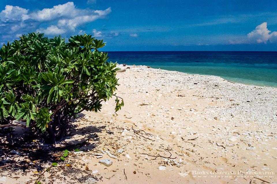 Riau Islands, Natuna Islands. Southwest Natuna. Small island just north of Kalimantan. On the beach. (Bjorn Grotting)