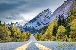 "Autumn along the Icefield Parkway in Banff National Park (© Daryl Hunter's ""The Hole Picture/Daryl L. Hunter)"