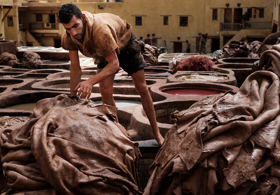 FEZ, MOROCCO - CIRCA APRIL 2017: Man working in the Fez tannery dyeing leather. (Daniel Korzeniewski)