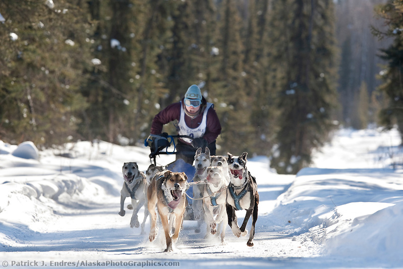 Trisha Seibold drives an 8 dog team in the 2009 Limited North American sprint sled dog race, Fairbanks, Alaska. (Patrick J. Endres / AlaskaPhotoGraphics.com)