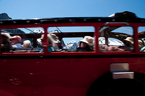 Red Bus Tour, Glacier National Park, Montana, US (Roddy Scheer)